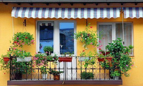 Terrazza piena di fiori con tenda veneziana