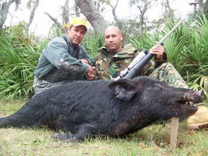 Florida wild boar hunting