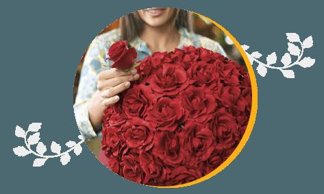 Bouquet of elegant red roses
