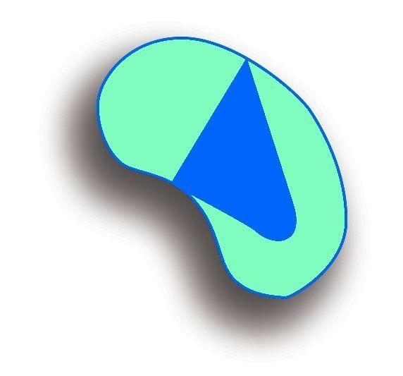icona tropici