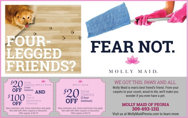 Molly Maid of Peoria house cleaners coupons