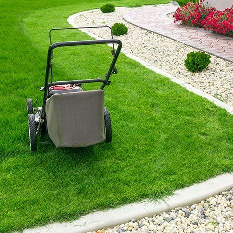 Image result for Lawn Companies istock