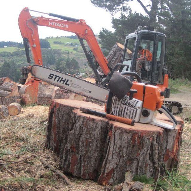 Forestry work in Dunedin