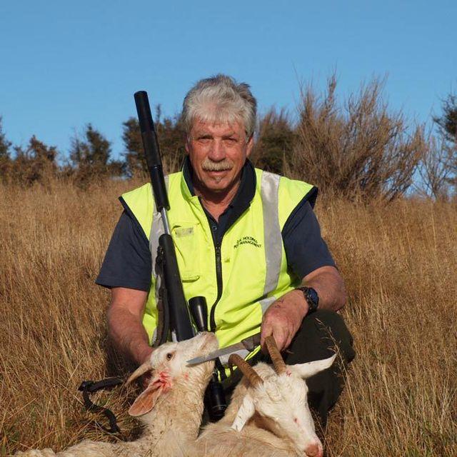 Goat control in Dunedin