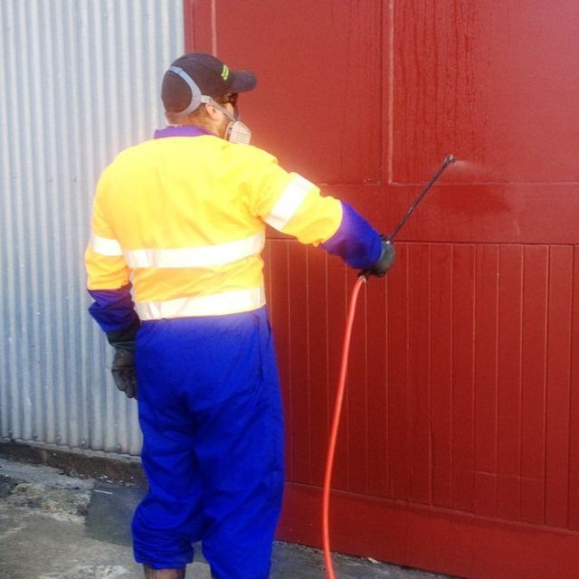 Spider proofing in Dunedin