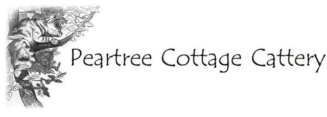Peartree Cottage Cattery logo