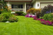 Lawn care in Anchorage, AK