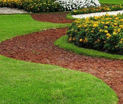 Lawn Care Little Rock Ar Healthy Lawns Shrubs