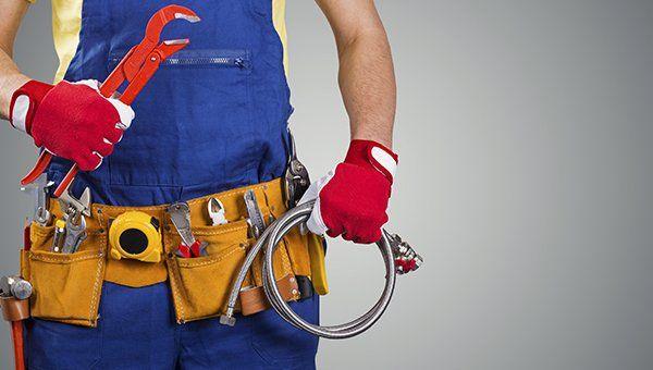 un idraulico con una divisa blu con attrezzi nelle tasche e in mano un tubo grigio e un pappagallo rosso
