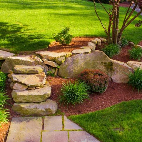 Beautiful garden with rocks and plants