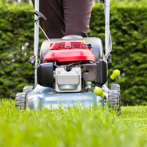 A worker with lawnmower maintaining customer lawn