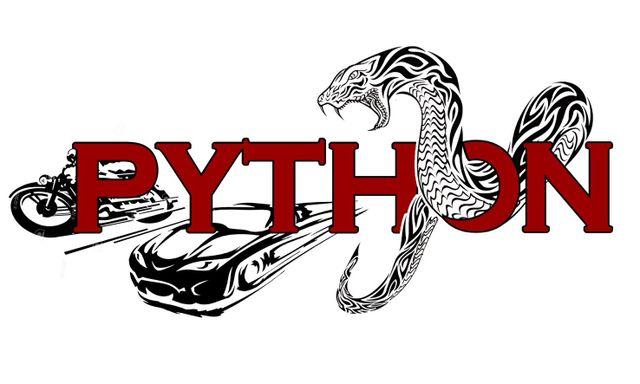 PYTHON R.P. AUTORIPARAZIONI - LOGO
