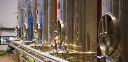 L'olio d'oliva esausto a Senigallia