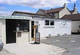 Kennels at Greenfield Kennels, Cattery & Pet Shop