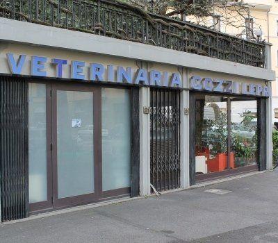 clinica veterianria Cozzi Lepri