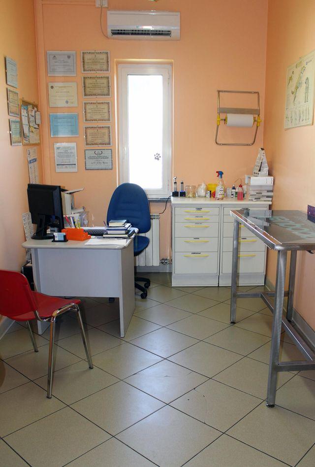 interno di uno studio veterinario