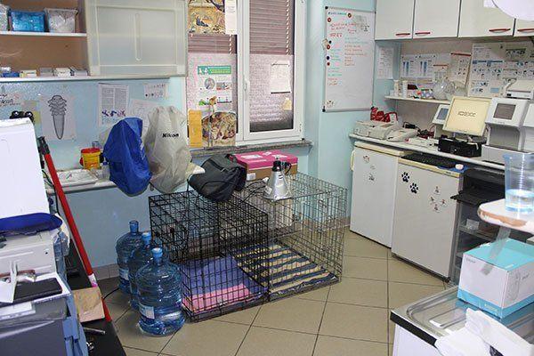 attrezzi studio veterinario