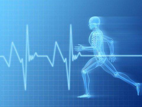 un linea del un cuore che batte e un'immagine di una persona che corre