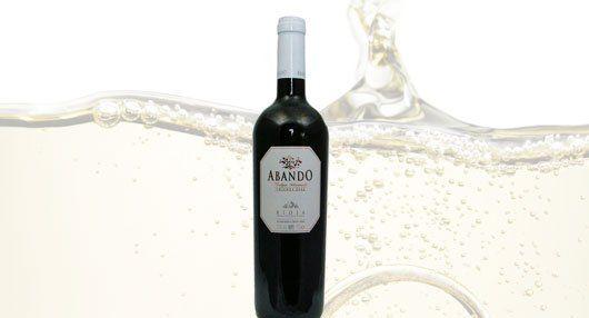 Spain wine bottle
