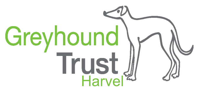 Logo of Retired Greyhound Trust