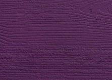 violet colour door