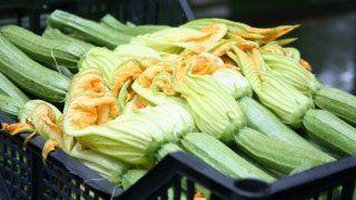 zucchine selezionate