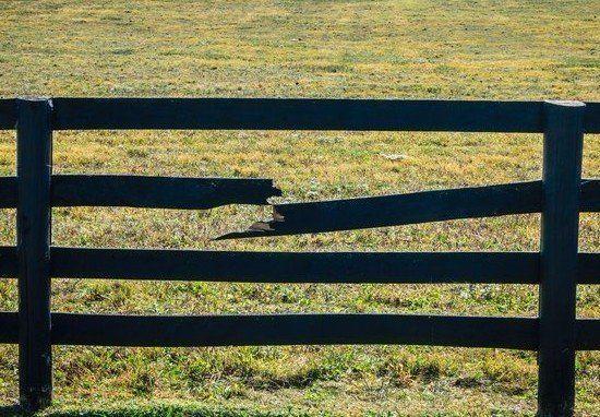 Fencing Company Nashville Amp Murfreesboro Tn Clean Cut Fence
