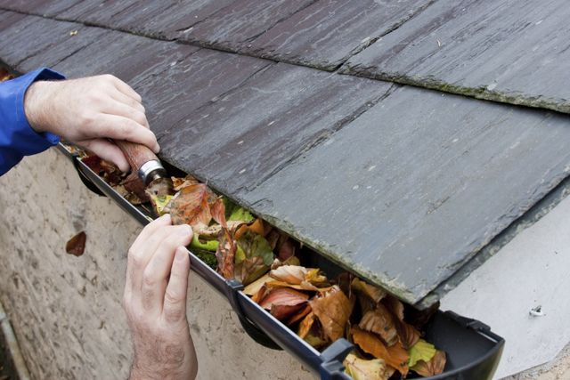 Cleaning gutters in Christchurch