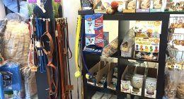 alimenti animali, pasture pesca, guinzagli cani