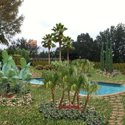 giardino a bordo piscina realizzato su commissione