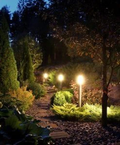 Nightscapes Outdoor Lighting Specialist Vines Gardening