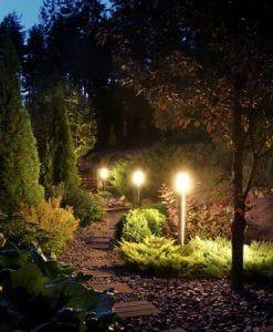 Nightscapes Outdoor Lighting Specialist Vines Gardening