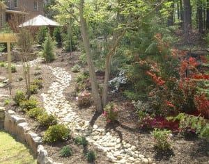 Drainage Solutions | Professional Landscape Contractor