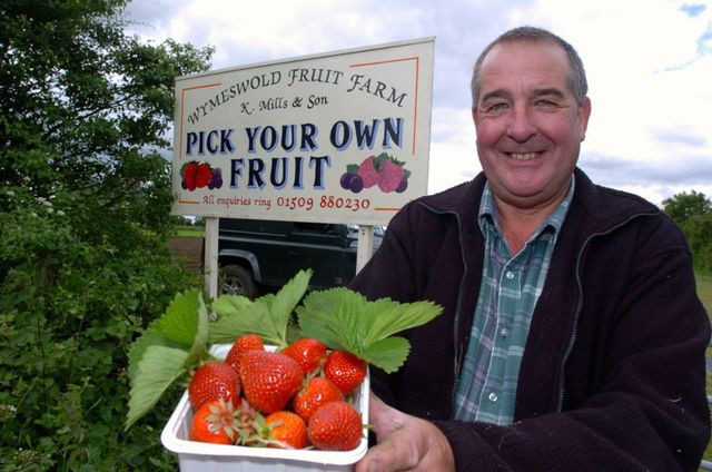 Ed Mills displaying strawberries