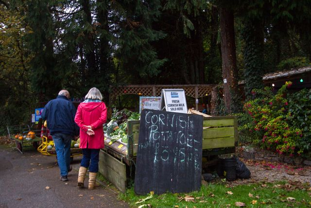 A couple browse which fresh fruit and vegetables are available. Perran-ar-Worthal, Cornwall. 30.10.15.