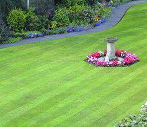 Landscaping gardening - Lisburn, County Antrim - John Wallace Landscaping - Landscaping