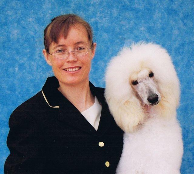 Heathers Dog Grooming Ltd Professional Dog Groomers In Bangor