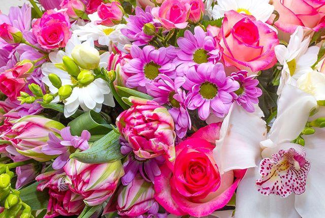 Un insieme di fiori di color rosa, lilla e delle orchidee