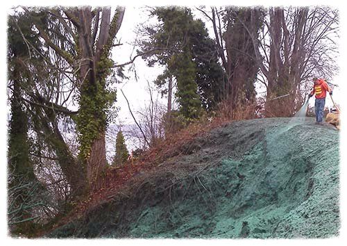 the best hydroseeding company in washington