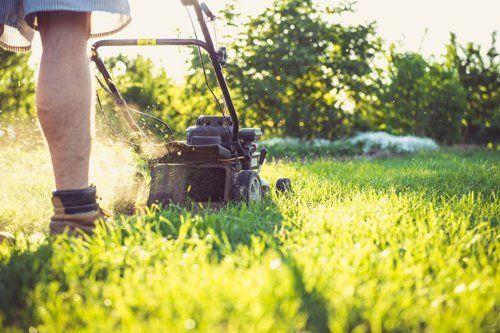 persona intenta a tagliare erba con trattorino