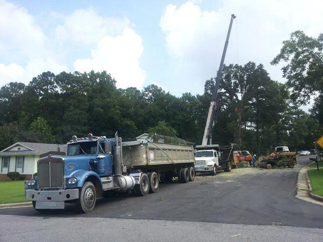 tree removal fuquay varina