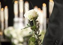 rosa binca e candele accese