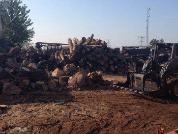 Wood Waste Recycling-Naperville, IL-Steve Piper & Sons, Inc