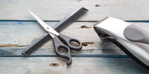 scissor and comb