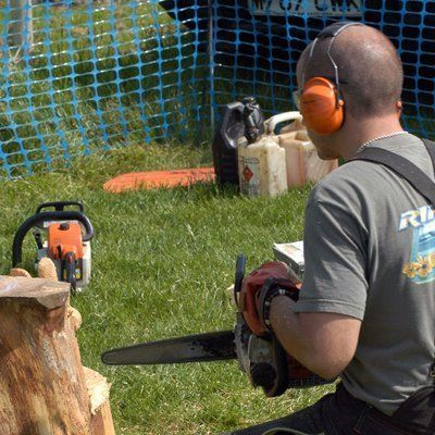 tree stump removals