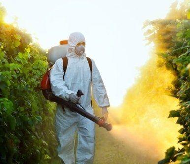 disinfestazioni ambientali