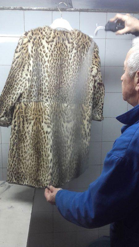 un signore sta pulendo a vapore una pelliccia leopardata