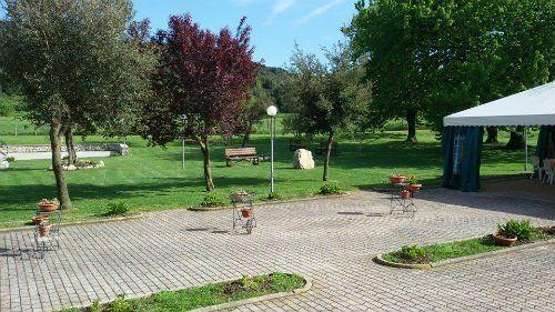 un giardino con degli e alberi delle aiuole