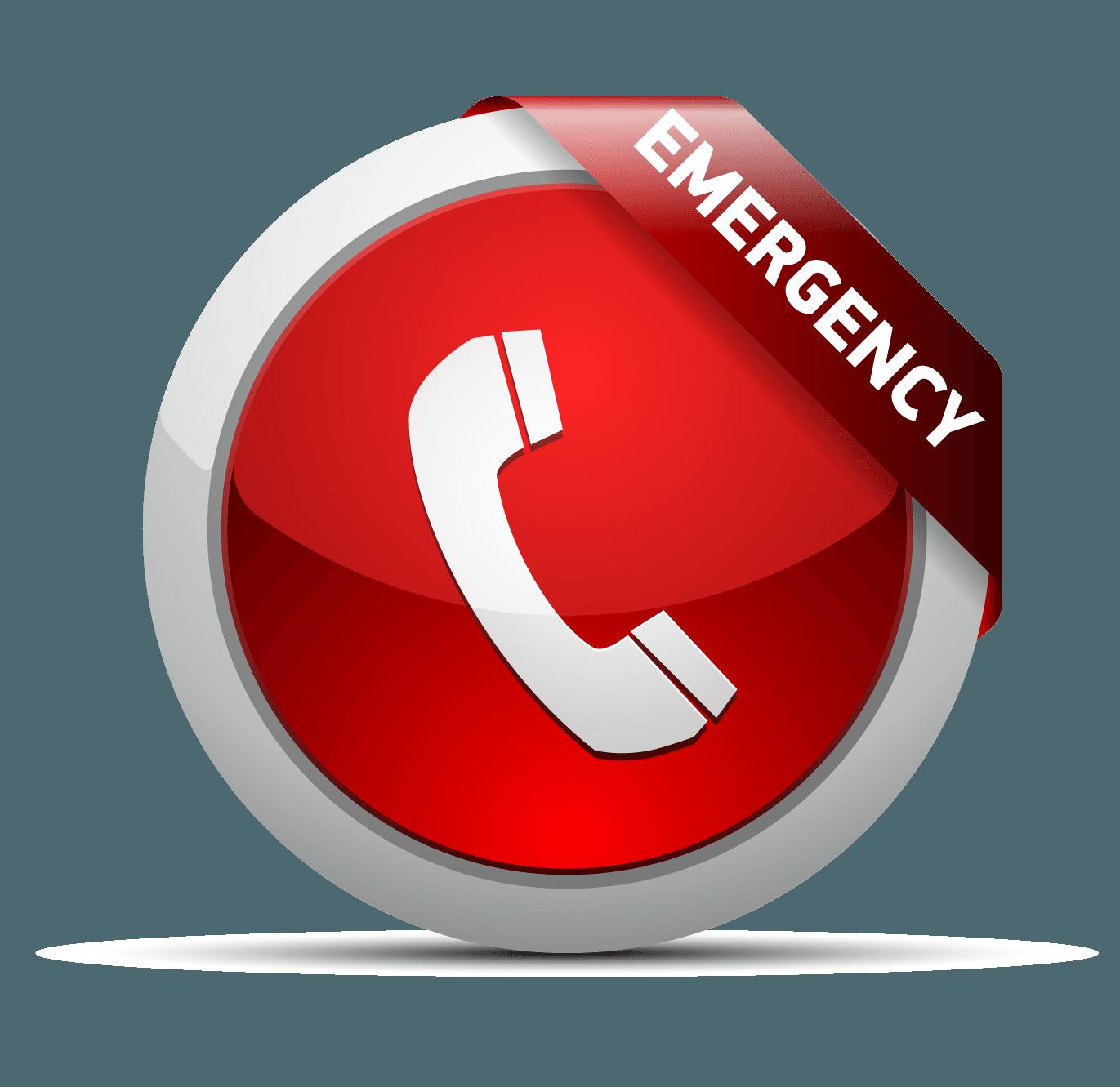 Emergency Tree Service Philadelphia
