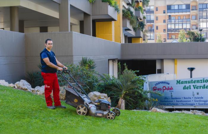 manutenzione verde, potatura alberi, taglio erba